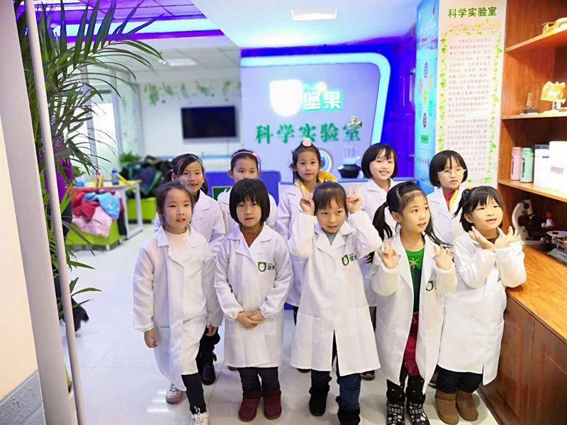 坚果科学实验室加盟 坚果教育